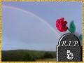 :regenbogen: